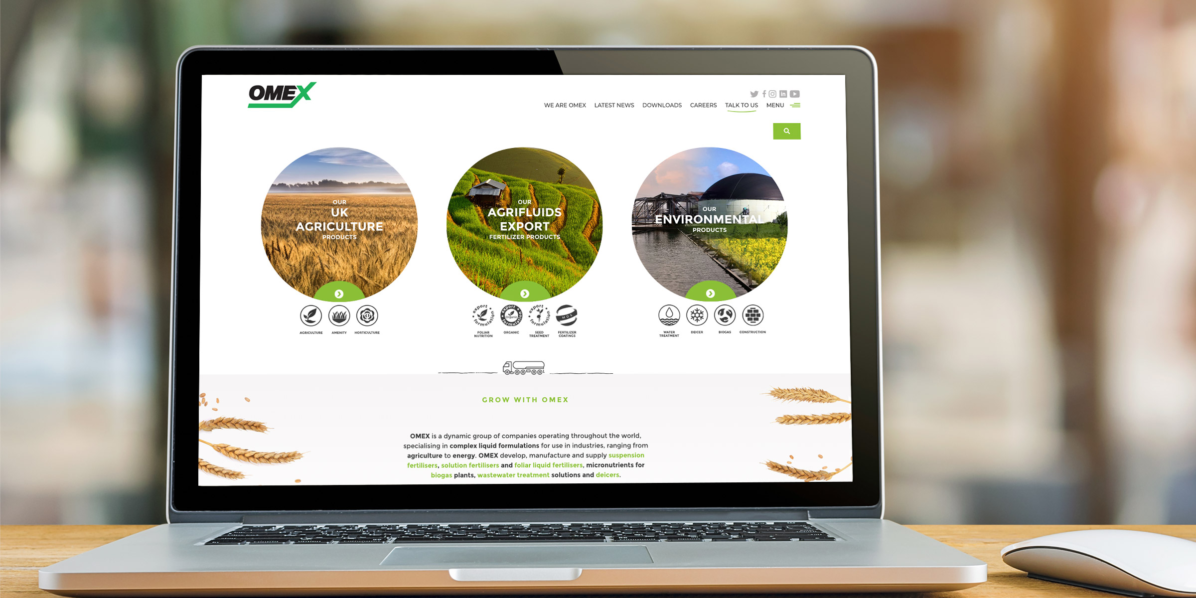 OMEX website design
