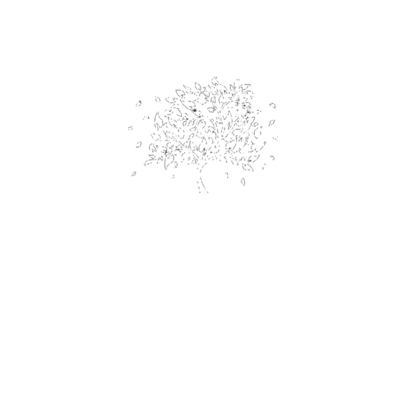 Park Lodge Retirment Homes logo