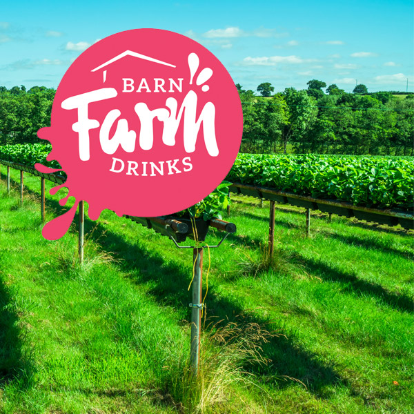 Barn Farm Drinks branding