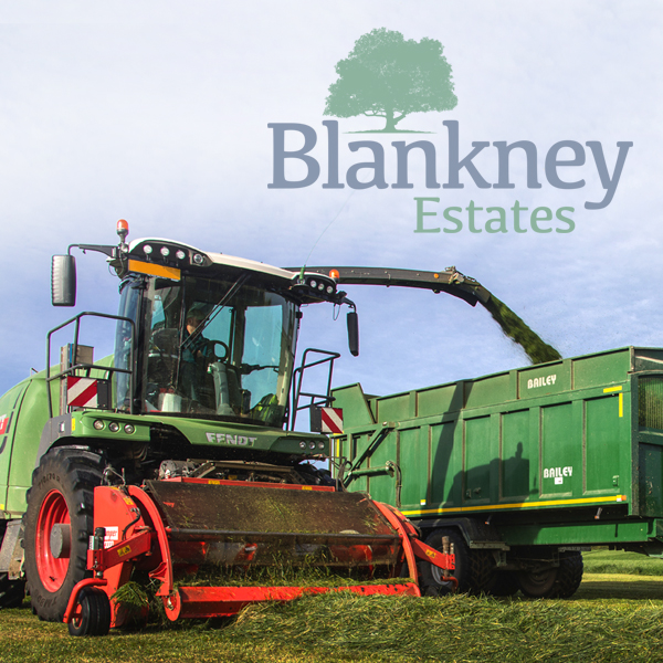 Blankney Estates branding