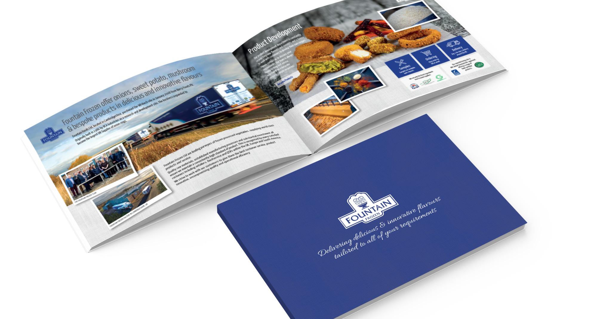 Fountain Frozen Literature brochure