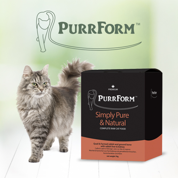 Purrform raw cat food branding