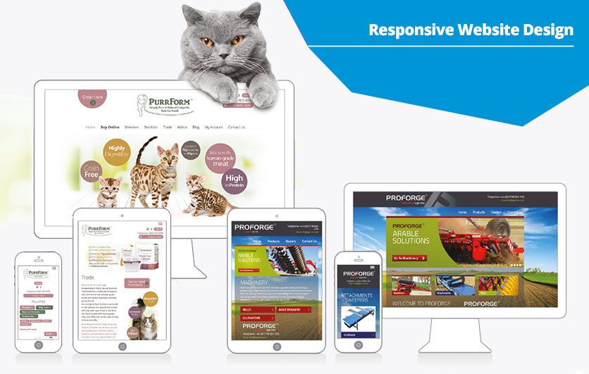Purrfectly responsive